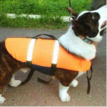 Спасательные жилет для собаки Spass-dog, размер M, собаки до 10 кг, 66х30х46 см